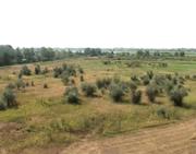 Земля в Уральске 101 га рядом с рекой в самом городе