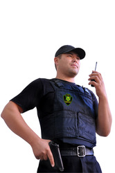 Профессиональная охрана юридических и физических лиц.