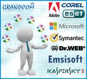 Программное обеспечение: Microsoft+антивирусы